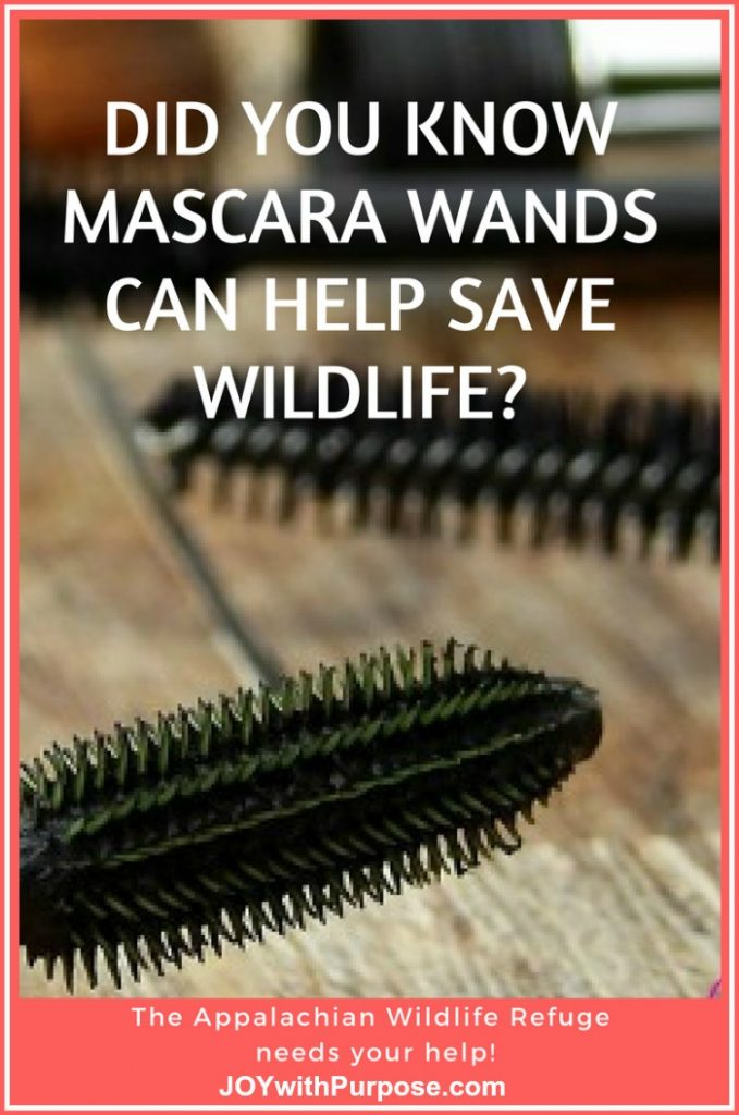 mascara wands can be recycled to help wildlife in appalachia